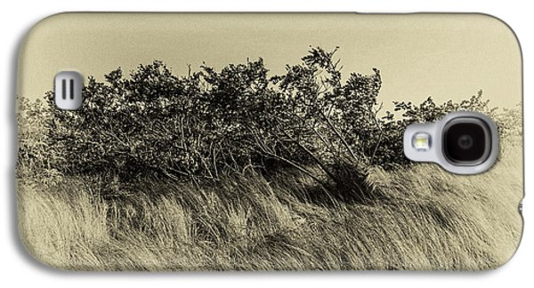 Apollo Beach Grass Galaxy S4 Case by Marvin Spates