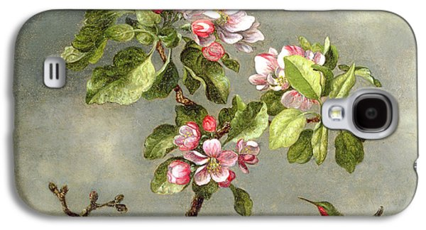 Talons Paintings Galaxy S4 Cases - Apple Blossoms and a Hummingbird Galaxy S4 Case by Martin Johnson Heade