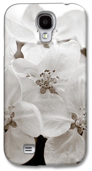 Apple Blossoms Galaxy S4 Case by Frank Tschakert