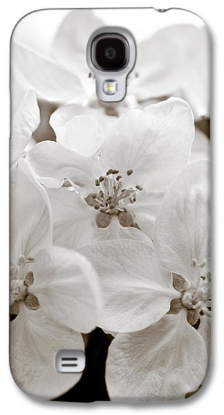 Fruit Tree Art Galaxy S4 Cases - Apple Blossoms Galaxy S4 Case by Frank Tschakert