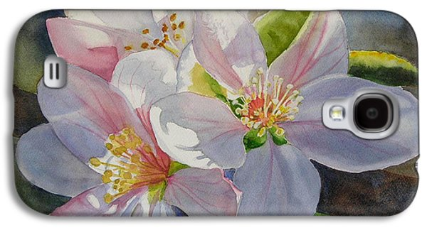 Apple Trees Galaxy S4 Cases - Apple Blossoms in Sunlight Galaxy S4 Case by Sharon Freeman