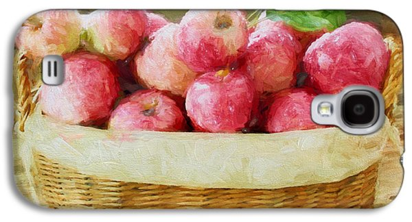 Harvest Time Galaxy S4 Cases - Apple Harvest Galaxy S4 Case by Darren Fisher