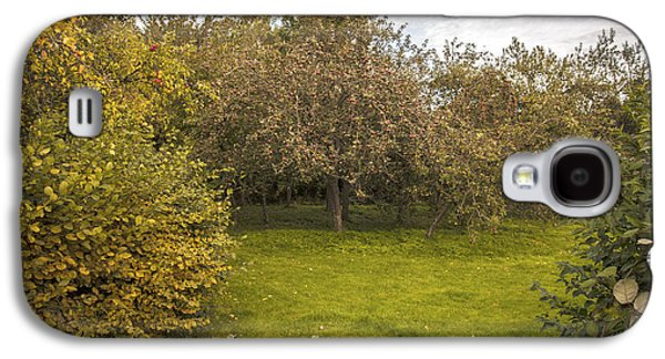 Harvest Time Galaxy S4 Cases - Apple Orchard Galaxy S4 Case by Amanda And Christopher Elwell
