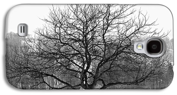 Winter Trees Photographs Galaxy S4 Cases - Apple tree in winter Galaxy S4 Case by Elena Elisseeva