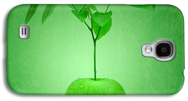 Concept Photographs Galaxy S4 Cases - Apple Tree Galaxy S4 Case by Wim Lanclus