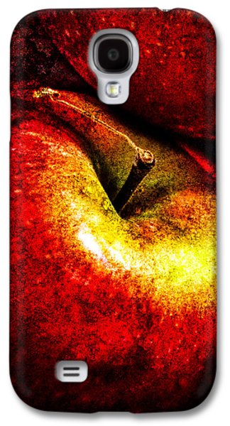 Apple Photographs Galaxy S4 Cases - Apples  Galaxy S4 Case by Bob Orsillo