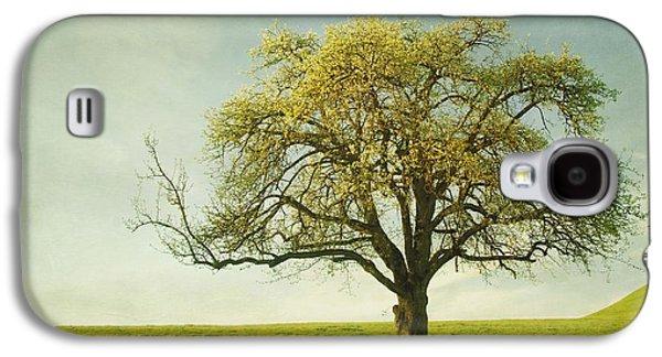 Apple Trees Galaxy S4 Cases - Appletree Galaxy S4 Case by Priska Wettstein