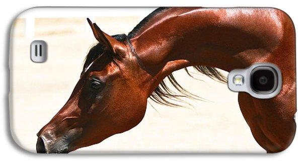 Quarter Horses Galaxy S4 Cases - Arabian Mare Galaxy S4 Case by Holly Martin