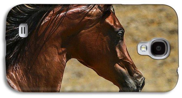 Quarter Horses Galaxy S4 Cases - Arabian Mare II Galaxy S4 Case by Holly Martin