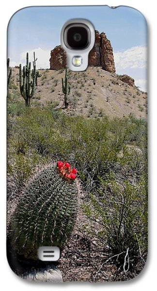 Western Photographs Galaxy S4 Cases - Arizona Icons Galaxy S4 Case by Joe Kozlowski