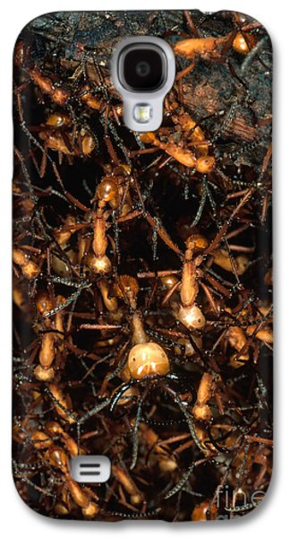 Army Ant Bivouac Site Galaxy S4 Case by Gregory G. Dimijian, M.D.