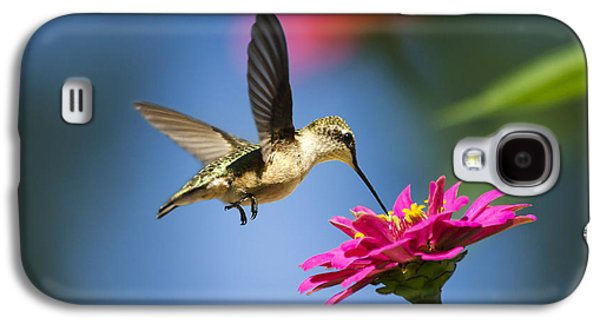 Art Of Hummingbird Flight Galaxy S4 Case by Christina Rollo
