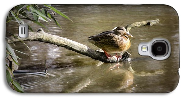 Trees Reflecting In Creek Galaxy S4 Cases - Artistic paintiry Female Mallard Duck Sitting On A Log Near And Reflected In Water Galaxy S4 Case by Leif Sohlman