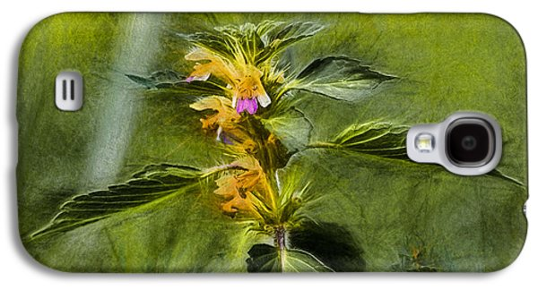 Paiting Galaxy S4 Cases - Artistic paiterly Nettle On Top Yellow Flower With Lilac Skirt Looking Forward Galaxy S4 Case by Leif Sohlman
