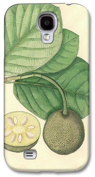 Artocarpus Chaplasha Galaxy S4 Case by Natural History Museum, London