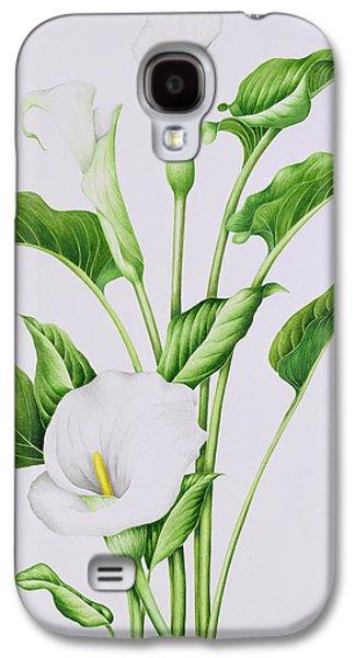Botanical Galaxy S4 Cases - Arum Lily Galaxy S4 Case by Sally Crosthwaite