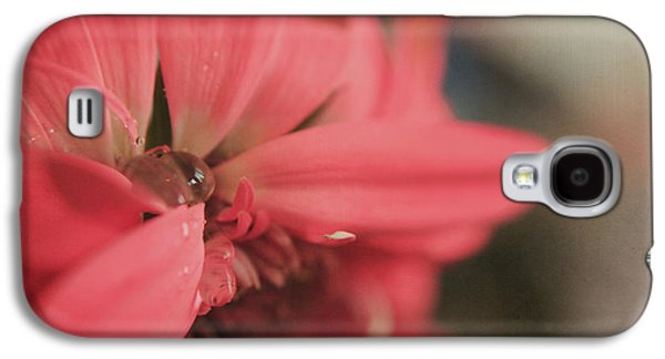 Texture Flower Galaxy S4 Cases - As I Sit by the Window Galaxy S4 Case by Laurie Search