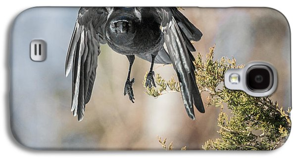 Crows Galaxy S4 Cases - As The Crow Flies Square Galaxy S4 Case by Bill  Wakeley