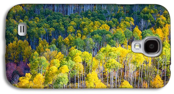 North America Photographs Galaxy S4 Cases - Aspen HIllside Galaxy S4 Case by Inge Johnsson