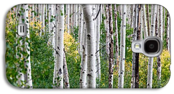 Trees Photographs Galaxy S4 Cases - Aspen Trees Galaxy S4 Case by Steve Gadomski