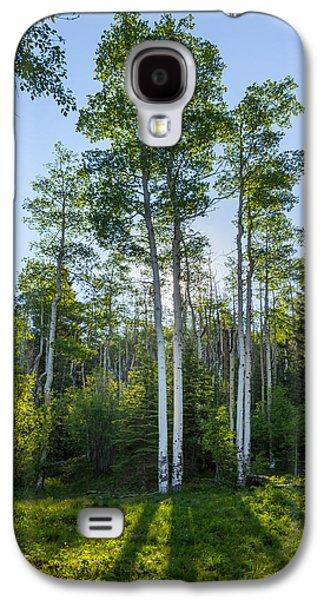 Stunning Galaxy S4 Cases - Aspens At Sunrise 1 - Santa Fe New Mexico Galaxy S4 Case by Brian Harig