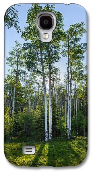 Aspen Galaxy S4 Cases - Aspens At Sunrise 1 - Santa Fe New Mexico Galaxy S4 Case by Brian Harig