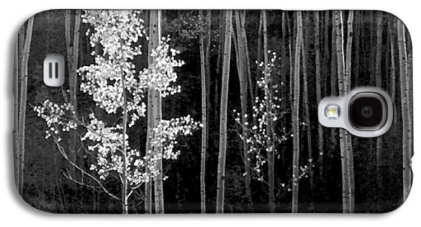 Aspens Northern New Mexico Galaxy S4 Case by Ansel Adams