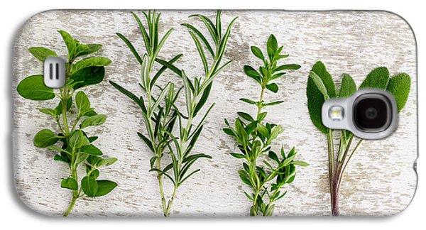 Fresh Green Galaxy S4 Cases - Assorted fresh Herbs Galaxy S4 Case by Nailia Schwarz