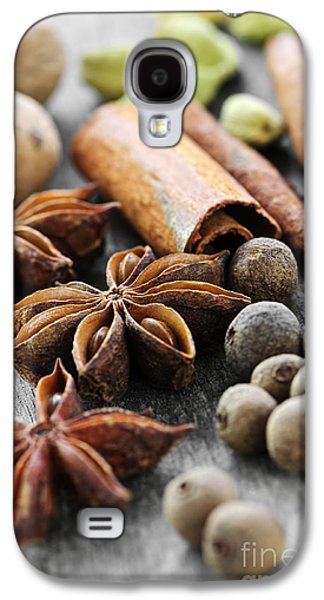 Pods Galaxy S4 Cases - Assorted spices Galaxy S4 Case by Elena Elisseeva