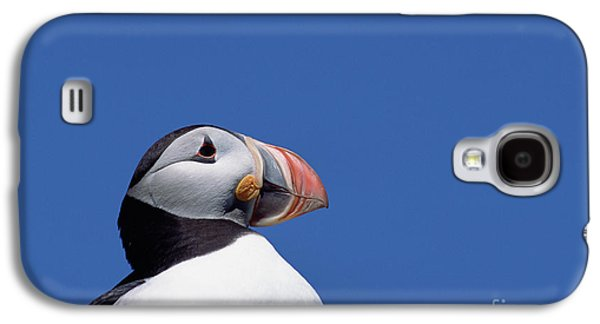 Atlantic Puffin In Breeding Colors Galaxy S4 Case by