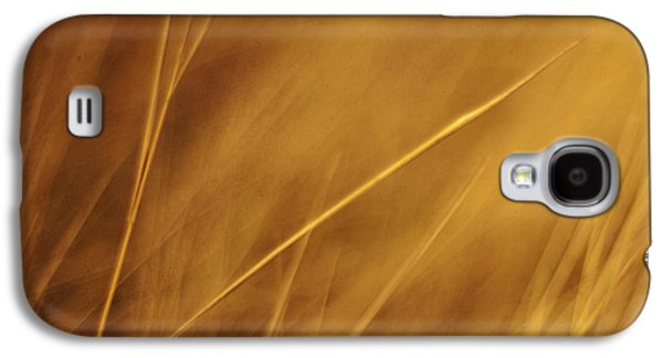 Aurum Galaxy S4 Case by Priska Wettstein