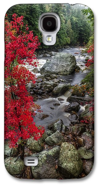 Beauty Mark Photographs Galaxy S4 Cases - Ausable River Galaxy S4 Case by Mark Papke