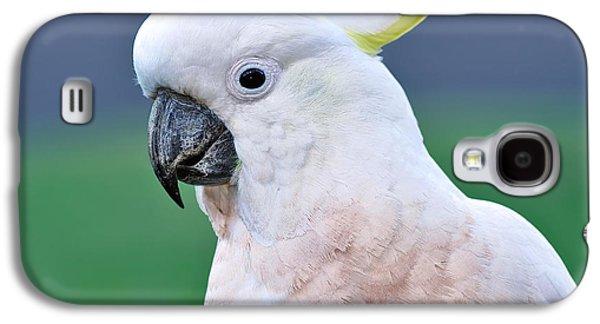Australian Birds - Cockatoo Galaxy S4 Case by Kaye Menner
