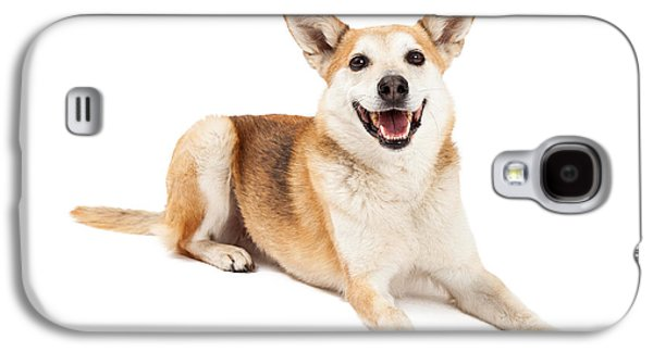 Cattle Dog Galaxy S4 Cases - Australian Cattle and Shiba Inu Mix Dog Laying Galaxy S4 Case by Susan  Schmitz