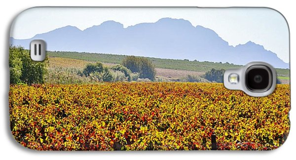 Stellenbosch Galaxy S4 Cases - Autum wine field Galaxy S4 Case by Werner Lehmann