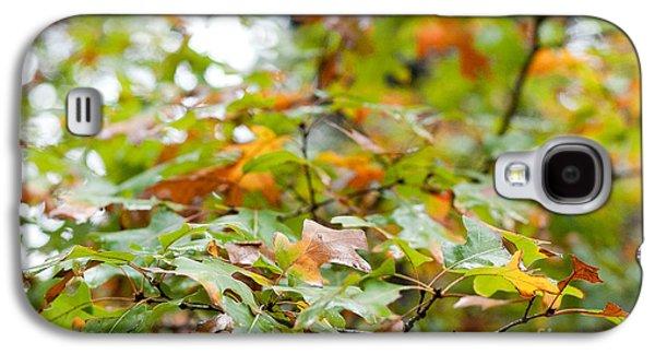 Barbara Shallue Galaxy S4 Cases - Autumn Galaxy S4 Case by Barbara Shallue