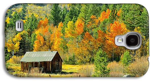 Interior Still Life Pyrography Galaxy S4 Cases - Autumn Cabin Galaxy S4 Case by  Jared Votaw