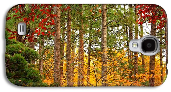 Autumn Landscape Galaxy S4 Cases - Autumn Canvas Galaxy S4 Case by Carol Groenen