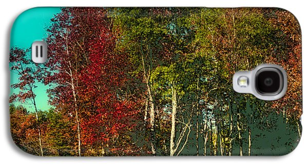 Surreal Landscape Galaxy S4 Cases - Autumn Color in the Adirondack Mountains Galaxy S4 Case by David Patterson