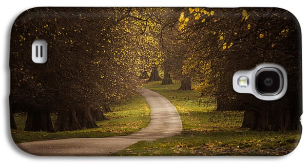 Fall Grass Galaxy S4 Cases - Autumn in Calke Abbey Galaxy S4 Case by Chris Fletcher