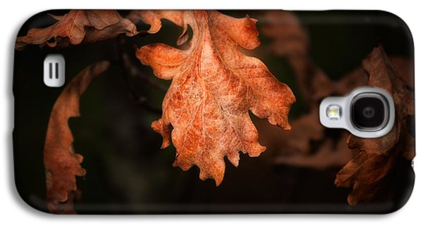 Autumn Is In The Air Galaxy S4 Case by Tom Mc Nemar