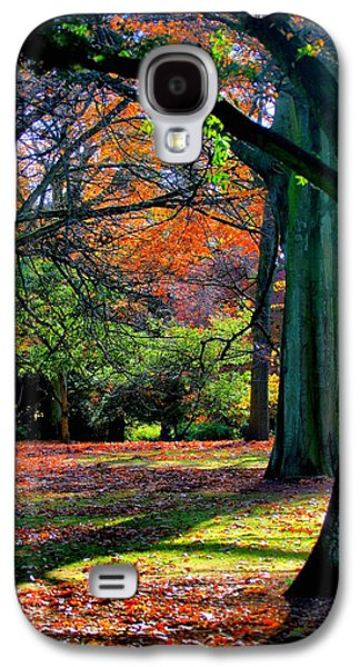 Abstract Digital Paintings Galaxy S4 Cases - Autumn in the Park V b Galaxy S4 Case by Gert J Rheeders