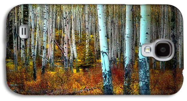 Tara Turner Galaxy S4 Cases - Autumn in the Woods Galaxy S4 Case by Tara Turner