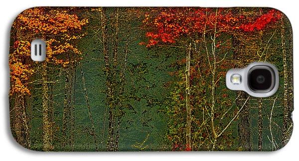 Abstract Nature Galaxy S4 Cases - Autumn Landscape Galaxy S4 Case by David Patterson