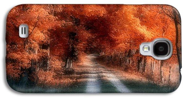 Country Dirt Roads Galaxy S4 Cases - Autumn Lane Galaxy S4 Case by Tom Mc Nemar