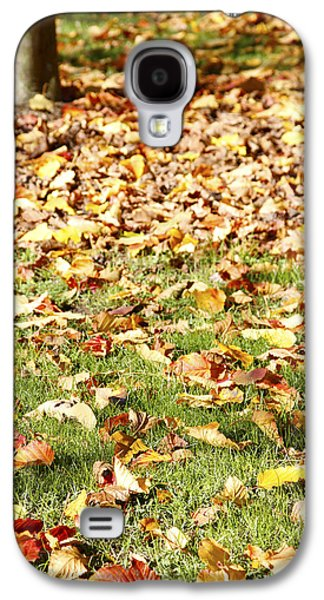 Fall Grass Galaxy S4 Cases - Autumn leaves Galaxy S4 Case by Les Cunliffe