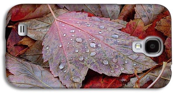 Botanical Galaxy S4 Cases - Autumn Melange Galaxy S4 Case by Rona Black