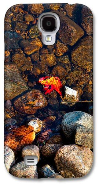 Autumn Leaf On Water Galaxy S4 Cases - Autumn on the Shore Galaxy S4 Case by David Patterson