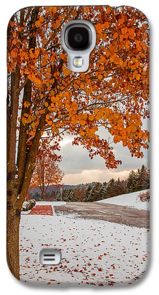 Trees In Snow Galaxy S4 Cases - Autumn or Winter Galaxy S4 Case by April Reppucci