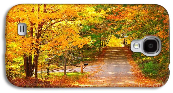 Fall Trees Fall Color Galaxy S4 Cases - Autumn Road Home Galaxy S4 Case by Terri Gostola